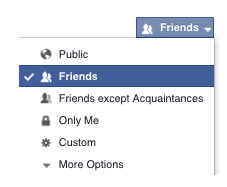 Select only me to hide friend list from other fb users